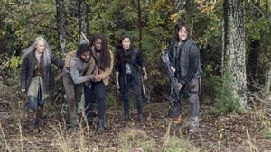 The Walking Dead: 9×15