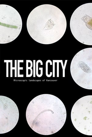 The Big City
