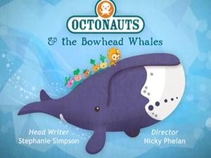 The Octonauts Season 2 Episode 6