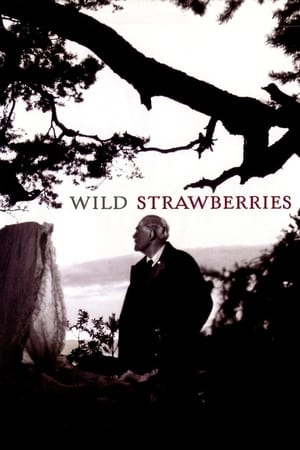 Wild Strawberries (Smultronstallet)