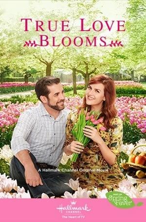 True Love Blooms Movie Watch Online