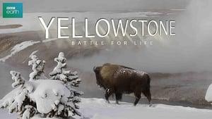 Yellowstone (2009) online ελληνικοί υπότιτλοι