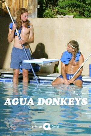 Agua Donkeys (2020)