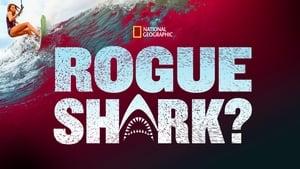 Rogue Shark? (2021)