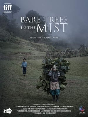 Bare Trees In The Mist (2019)