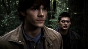 Supernatural: 1×8