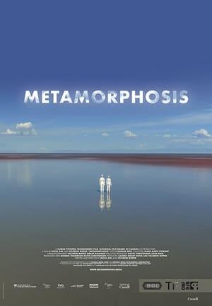 Image Metamorphosis
