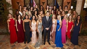The Bachelor, Season 19 picture