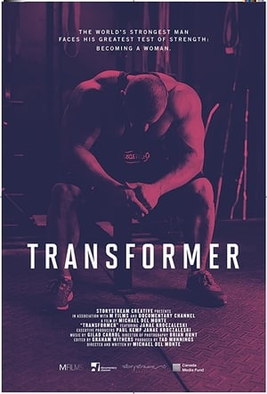 Transformer (2018)
