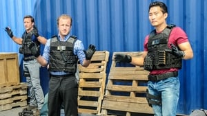 Hawaii Five-0 Season 3 :Episode 19  Hoa Pili