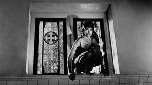 Bloody Marie – Eine Frau mit Biss (1992)