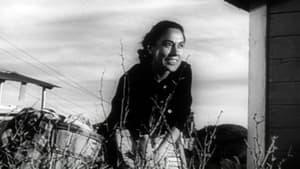 Salt of the Earth (1954)