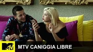 TRL Online HD