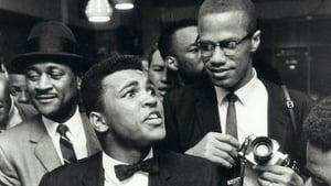 Who Killed Malcolm X? (¿Quien mato a Malcolm X?): 1×3