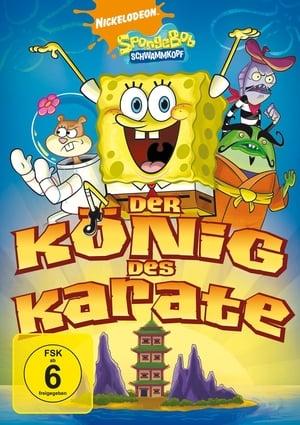 Image SpongeBob SquarePants - Karate Island