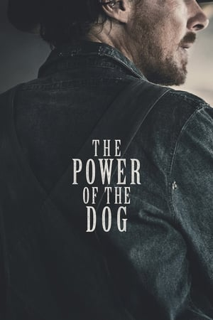 Watch The Power of the Dog Full Movie