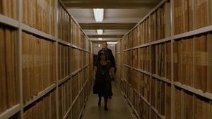 Bibliotekstjuven