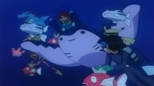 Pokémon Season 5 :Episode 5  Mantine Overboard!