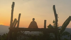 The Odd Monk