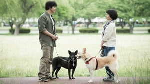 Japanese movie from 2015: Dogs Without Names