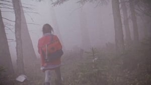 Swedish movie from 1997: The Girl in the Mist