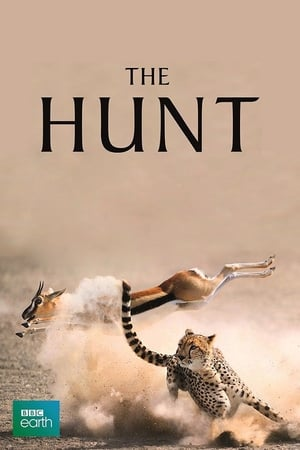 The Hunt streaming