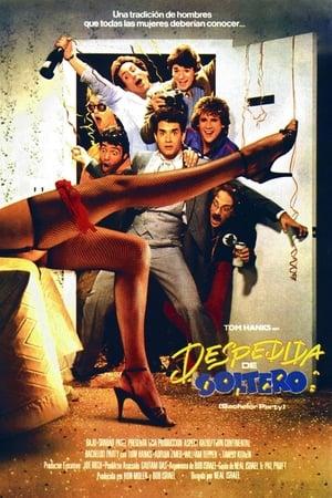 Despedida de soltero (1984)