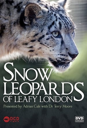Snow Leopards of Leafy London (2013)