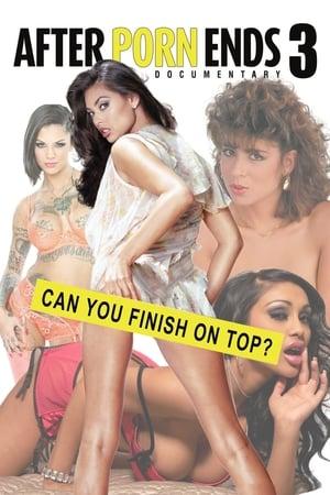 poster After Porn Ends 3