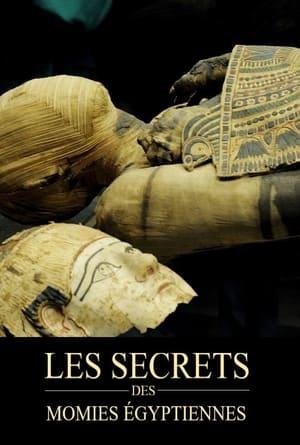 Mummy Mysteries