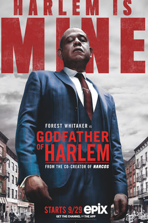 Godfather of Harlem 1ª Temporada Torrent, Download, movie, filme, poster