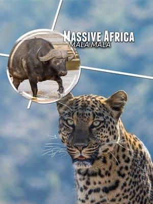 Massive Africa: Mala Mala