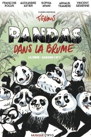 Image Pandas dans la brume
