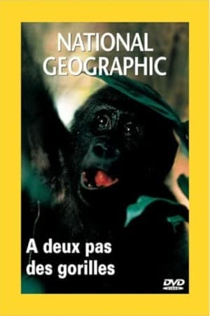 National Geographic: Living With Gorillas