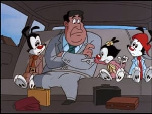 Watch S5E13 - Animaniacs Online