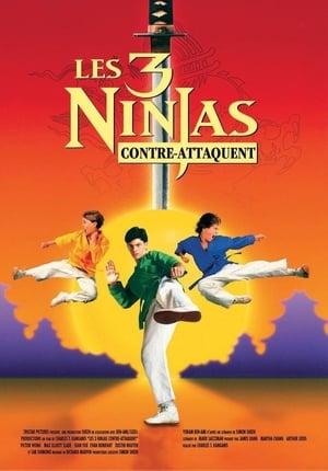 Ninja Kids 2 : Les 3 Ninjas contre-attaquent (1994)