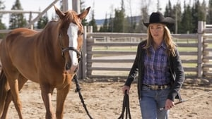 Heartland Season 7 :Episode 1  Picking Up the Pieces