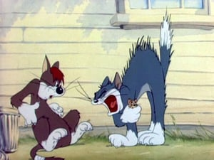 Tom And Jerry: 1×9