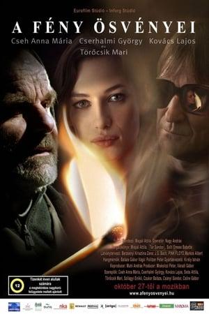 Paths of Light (2005)