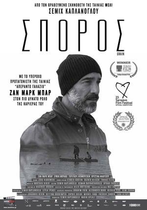 Ziarno / Grain
