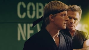 Cobra Kai : Season 1-2 Complete Dual Audio [Hindi DD5.1 – English] WEB-Rip 720p