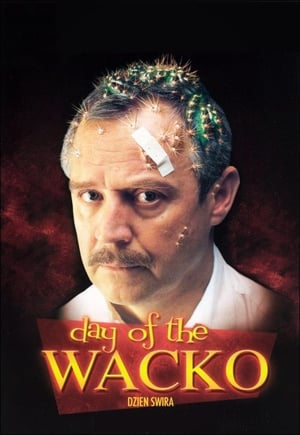Day of the Wacko-Azwaad Movie Database