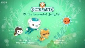 The Octonauts Season 3 Episode 17