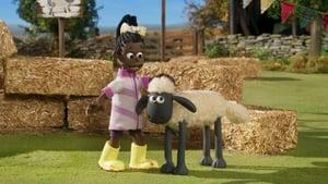 Shaun das Schaf: 6×20