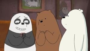 Ursos Sem Curso: 1×21