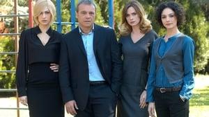 Italian series from 2011-2011: Dov'è mia figlia