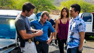 Hawaii 5.0: sezon 3 odcinek 15