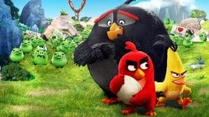 Angry Birds Brrip 1080p (2016) Latino