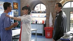 NCIS Season 12 :Episode 13  We Build, We Fight