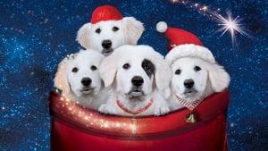Zampa 2 – I cuccioli di Natale